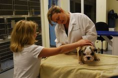 Leslie Steele and her daughter, Olivia, providing a thorough exam on this adorable english bulldog. Pet Trust, Your Pet, Daughter, English, Animals, Animales, Animaux, English Language, My Daughter