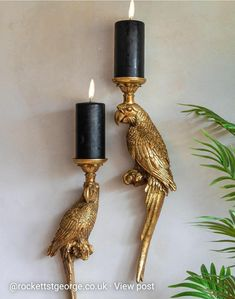 Wall Mounted Candle Holders, Gold Candle Holders, Candle Holder Decor, Gold Candles, Candle Sconces, Pillar Candles, Tea Lights, Wall Lights, Rockett St George