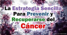 Nueva evidencia sugiere cetosis nutricional podría tratar con eficacia y evitar la mayoría de estos cánceres.