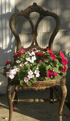 Turn old chairs into beautiful flower beds and planters. Would love an old chair on the deck to put a potted plant on. Garden Chairs, Garden Planters, Planters Flowers, Flowers Garden, Ideas For Planters, Impatiens Flowers, Garden Seat, Container Flowers, Chair Planter