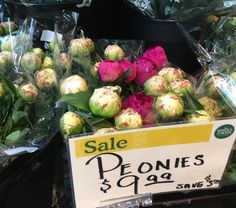 Peonies at whole foods in buckhead on 5/21/2016