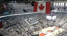 2014 Playoffs. Toronto Raptors, City Photo, Times Square, Canada, Travel, Google Search, Viajes, Traveling, Trips