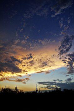 """""""The Desert Sky""""    #sunset #desertsouthwest #Arizona"""