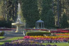 """Duncan Fountain""  © 2013 Pat Schilling"