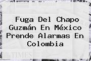 http://tecnoautos.com/wp-content/uploads/imagenes/tendencias/thumbs/fuga-del-chapo-guzman-en-mexico-prende-alarmas-en-colombia.jpg Chapo Guzman. Fuga del Chapo Guzmán en México prende alarmas en Colombia, Enlaces, Imágenes, Videos y Tweets - http://tecnoautos.com/actualidad/chapo-guzman-fuga-del-chapo-guzman-en-mexico-prende-alarmas-en-colombia/