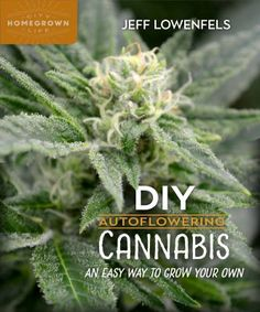 DIY Auto-flowering Cannabis is a complete, full-color how-to guide to cultivating these small, container-grown, fast-producing, day-neutral plants, while reaping their many benefits. If you can grow a tomato, you can grow and enjoy auto-flowering cannabis; no special equipment required.