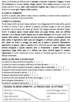 LA COLLINA PAG 3