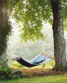someday my home will have a hammock or two to remind people to take the time to relax.