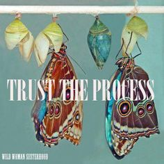 Oh yes Trust The Process, even when you can't see what, why, when or how, trust the process!