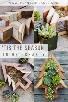 Show your holiday spirit this Christmas with the Planted Places DIY Succulent Christmas Tree Kit! Our Succulent Kit comes with everything you need to put together a unique decoration to use as a centerpiece or wall art! Succulent Frame, Succulent Cuttings, Succulent Planter Diy, Succulent Gifts, Succulent Gardening, Diy Planters, Garden Planters, Succulents Garden, Succulent Ideas