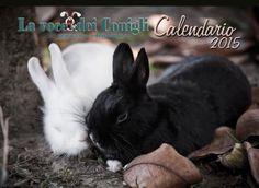 Il Calendario 2015 de La voce Dei conigli  http://www.lavocedeiconigli.it/