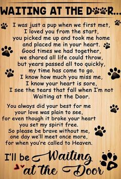 """The breed is commonly referred to as the """"Mastiff"""". Also known as the English Mastiff this giant dog breed gets known for its splendid, good natu I Love Dogs, Puppy Love, Pet Poems, Pet Loss Grief, Dog Loss Poem, Dog Loss Quotes, Dog Quotes Love, Dog Heaven Quotes, Pet Quotes Dog"""