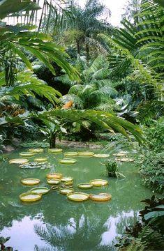 Singapore Botanic Gardens / Unesco Word Heritage List