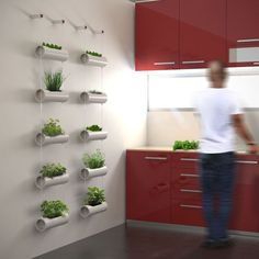 Indoor Vegetable Gardening 40 DIY Vertical Herb Garden Ideas to Have Fresh Herbs on Hand - Having your favorite fresh herbs close by for cooking is possible, even if you don't have lots of space. Just create a vertical herb garden! See our ideas. Indoor Vegetable Gardening, Hydroponic Gardening, Organic Gardening, Vertical Hydroponics, Aquaponics Greenhouse, Herb Gardening, Gardening Tools, Gardening Supplies, Diy Herb Garden