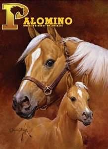 Image detail for -Palomino Horse Breeders Association of America