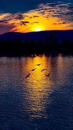 ~~Sundown by Tamas Filep ( ArtoFTom™ )~~