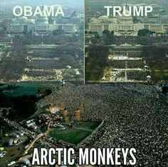 That's it, Alex Turner should be President.