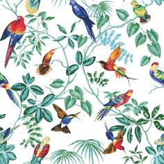 https://society6.com/product/jungle-birds-ii-b27_print