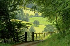 ***Country Lane leading to the River Wye (near Newland, Gloucestershire, England) by Iain Harris Beautiful World, Beautiful Places, Landscape Photography, Nature Photography, House Photography, Nature Aesthetic, Aesthetic Green, Summer Aesthetic, English Countryside