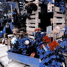 Aesthetic Themes, Scenery, Christmas Tree, Holiday Decor, Gallery, Wattpad, Headers, Banners, Beautiful