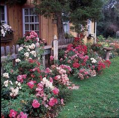Country flowers fencing