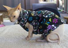 Cat's Pajamas in Cool patterns. Sphynx Clothes Cat by SimplySphynx, $18.00