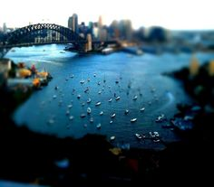 When boats look like toys: long distance shot of Lavender Bay with Sydney Harbour Bridge at the back.