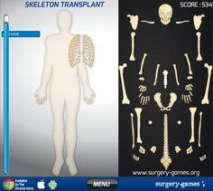 91 best skeletal system bones images preschool, activities Skeletal System Diagram House anatomy learn anatomy games skeletal system at best anatomy learn