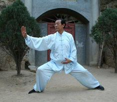 Traditional & Modern Tai Chi Forms - Part 1: why it is important to practice traditional tai chi forms, and not to replace them with modern ones...