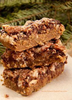 Gluten Free Coconut Pecan S'more Bars by Janice Amee's Gluten Free