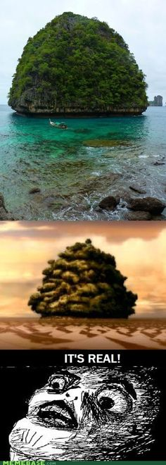 Lion Turtle Island, from Avatar: The Last Airbender