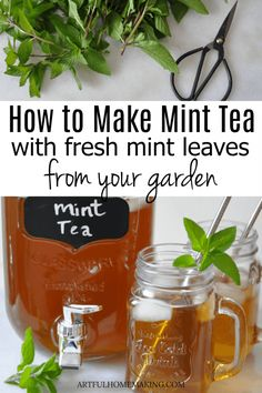 How to Make Mint Tea with Fresh Mint Leaves How to Make Mint Tea with Fresh Mint from your garden! This easy fresh mint tea is a refreshing and healthy summer drink recipe. Fresh Mint Tea, Mint Iced Tea, Fresh Mint Leaves, Uses For Mint Leaves, Mint Leaves Recipe, Benefits Of Mint Leaves, Drying Mint Leaves, Iced Tea Recipes, Herb Recipes