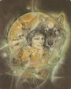 ANIMAL SPIRITS KNOWLEDGE CARDS BY SUSAN SEDDON BOULET