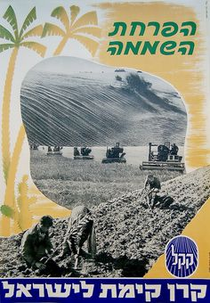 The Jewish National Fund (Hebrew:קרן קימת לישראל ,Keren Kayemet LeYisrael ) (abbreviated as JNF, and sometimes KKL) was founded in 1901 to buy and develop land in Ottoman Palestine (later British Mandate for Palestine, and subsequently Israel and the Palestinian territories) for Jewish settlement. | eBay!