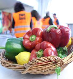 #RapportGarot: les Banques Alimentaires satisfaites, mais appellent au passage à l'acte. http://lc.cx/Zkrp