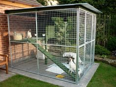 Extension on patio pad Outside Cat Enclosure, Cat Kennel, Cat Hotel, Diy Cat Tree, Cat Cages, Cat Run, Cat Condo, Outdoor Cats, Diy Stuffed Animals