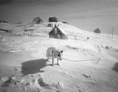 Untitled - by Ragnar Axelsson (1958), Icelandic