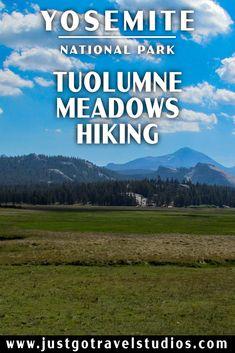 National Park Posters, Joshua Tree National Park, Yosemite National Park, National Parks, Bass Lake Yosemite, Yosemite Valley, Sequoia National Park Campgrounds, Tuolumne Meadows, Travel Expert