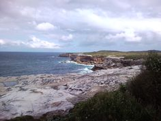 National Park Kurnell, NSW, Australia.  Whale watching