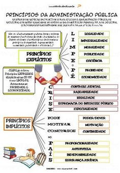 How to Learn Portuguese Quickly Mental Map, Learn Portuguese, Study Notes, Knowledge, Politics, Student, Education, Instagram, Powerful Quotes