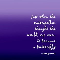 """just when a caterpillar thought the world was over, it became a butterfly"""
