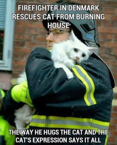 If I ever come upon a house where I can rescue a cat, I will totally hold it tight and love it and keep it safe!