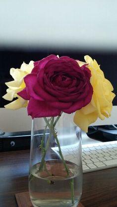 From the garden Glass Vase, Garden, Flowers, Home Decor, Homemade Home Decor, Garten, Lawn And Garden, Royal Icing Flowers, Outdoor