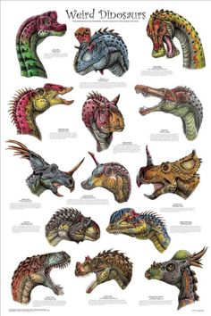 Laminated Weird Dinosaurs Educational Paleontology Science Chart Poster Poster a Dinosaur Posters, Dinosaur Art, Dinosaur Fossils, Dinosaur Types, Dinosaur Pics, Dinosaur Crafts, Prehistoric Dinosaurs, Prehistoric World, Prehistoric Creatures