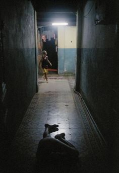 lorenzo castore - paradiso, 2002
