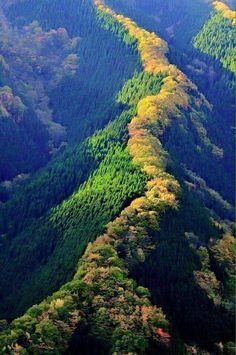 Küre dağları