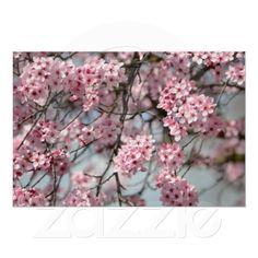 Cherry Blossom Tree print