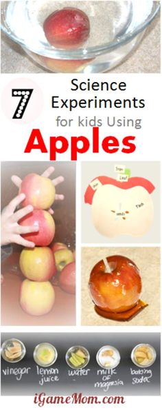 7 Yummy Science Experiments for Kids Using Apples. yummy science experiments for kids using apples -- why does cut apple change color? What to do to prevent it from turning brown? Fun STEM activities for home in the kitchen, school or homeschool. Apple Activities, Science Activities For Kids, Stem Science, Preschool Science, Autumn Activities, Preschool Apples, Kid Science, Summer Science, Fall Preschool