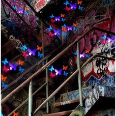 Artiste à l'identité secrète, TigTab aime redonner vie et lumière à des sites abandonnés!  Chaque image est créée à l'aide de pochoirs placés sur des caissons lumineux garni de papier, et lorsqu'un appareil photo flash s'allume à l'intérieur de ceux-ci l'image est révélée!  L'artiste encourage également les autres à expérimenter cette technique.  «N'importe qui peut éclairer la peinture. Elle n'est limitée que par votre imagination.  » Tigtap