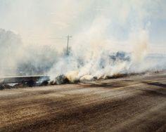 From Guanajuato Wildfires Thomas Prior
